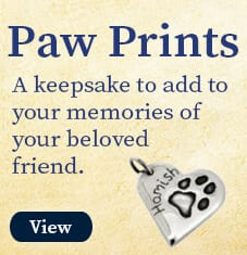 resting_pets_paw_prints_graphic_view