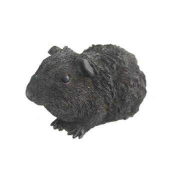 pet urns guinea pig cast