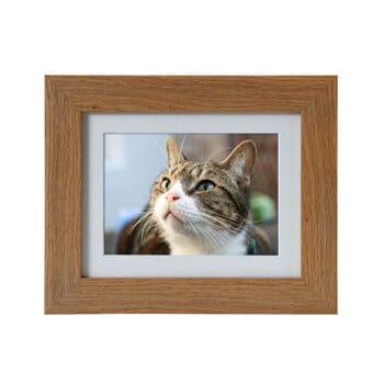 pet urns micro and mini frames